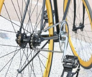 杉本哲太 自転車 逮捕